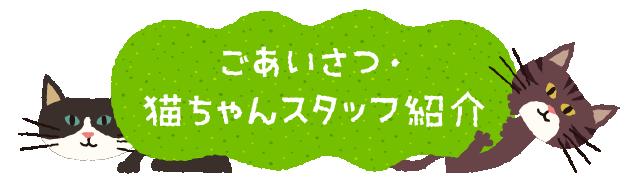ごあいさつ・猫ちゃんスタッフ紹介
