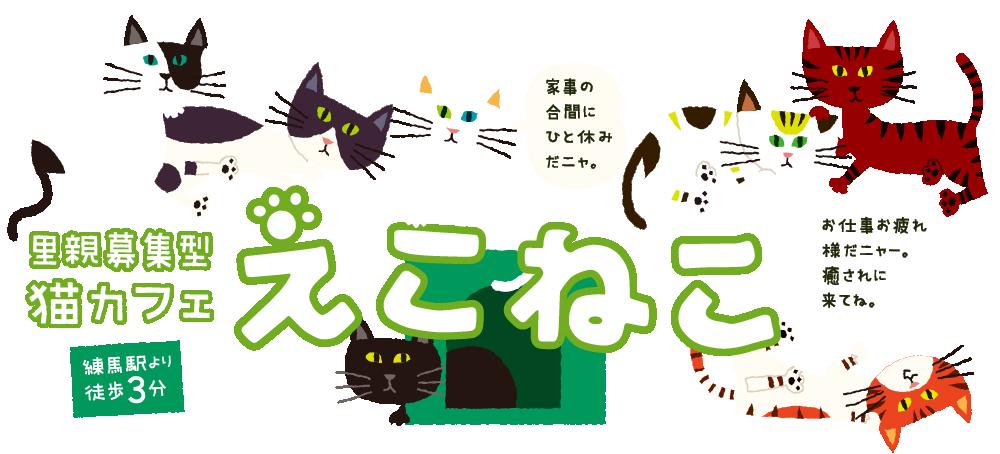 里親募集型猫カフェ「えこねこ 」